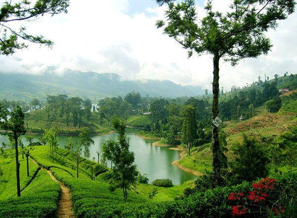 Cultura degli incontri dello Sri Lanka